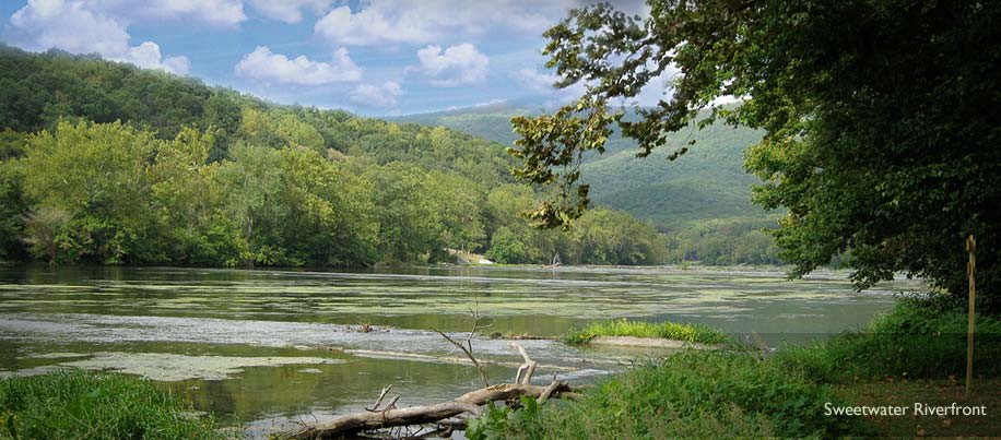 Sweetwater Vacations Properties consists of a cottage and two 1.5 acre RV sites located right on the South Fork of the Shenandoah River.